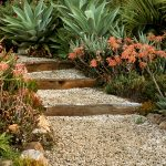 Garden-pathway-with-steps