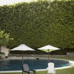 Outdoor-lounge-area-with-umbrellas