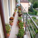 A-long-and-narrow-balcony-garden- (1)